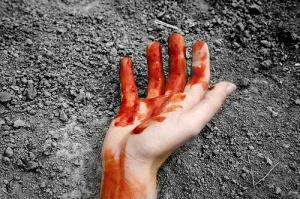 В Еланском районе убита престарелая женщина и ее 47-летний сын