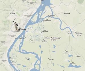 Волго-Ахтубинской пойме грозит экологическая катастрофа