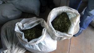 В Астрахани осуждена банда наркодилеров из Волгограда